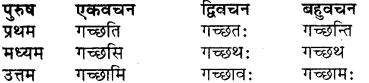 Vibhakti Of Balak RBSE Class 7