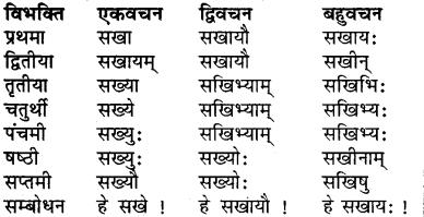 Balak Ki Vibhakti RBSE Class 7
