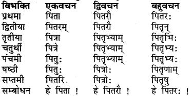 Class 7 Sanskrit Dhatu Roop RBSE