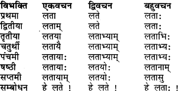 Shabdrupani In Sanskrit Class 7 RBSE