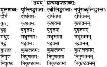 sanskrit pratyay class 8 RBSE