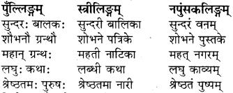 Visheshan In Sanskrit RBSE Class 8