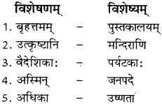 Visheshan Pad In Sanskrit RBSE Class 8