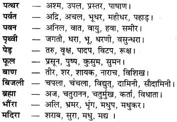 Paryayvachi Shabd RBSE