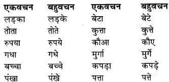 Ek Vachan Bahuvachan RBSE Class 9