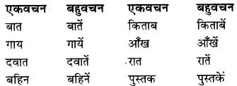 Ek Vachan Bahuvachan In Hindi RBSE Class 9