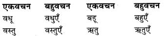 Bahuvachan In Hindi RBSE Class 9