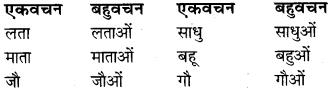 Ekvachan Bahuvachan In Hindi RBSE Class 9