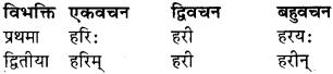 Class 9 Sanskrit Shabd Roop RBSE Solution