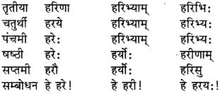 Shabdrupani In Sanskrit Class 9 RBSE Solution