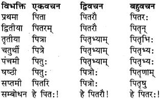 Shabd Roop In Sanskrit Class 9 RBSE Solution