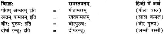 Dvigu Samas Examples In Sanskrit RBSE