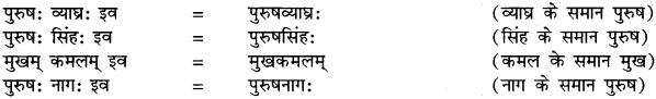 Samas In Sanskrit RBSE