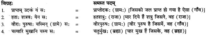 Bahuvrihi Samas Ke Udaharan Sanskrit Mein RBSE