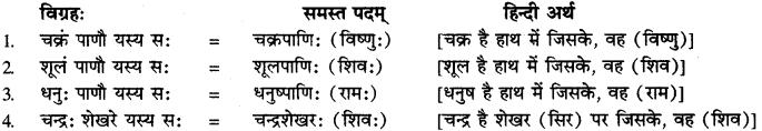 Ashtadhyayi Samas Vigrah In Sanskrit RBSE