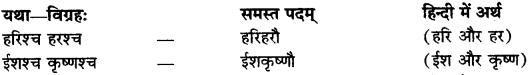 Samas Vigrah In Sanskrit RBSE