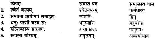 Sanskrit Mein Samas Vigrah RBSE Class 9