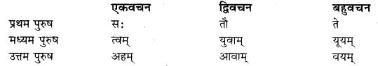 karakam in sanskrit RBSE Class 10