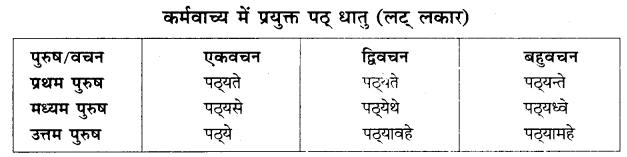 Vachya Parivartan Sanskrit Class 10 RBSE