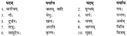 Sanskrit Class 10 RBSE