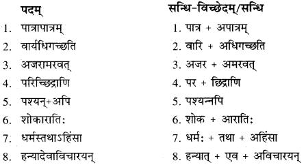 RBSE Solution Class 10 Sanskrit