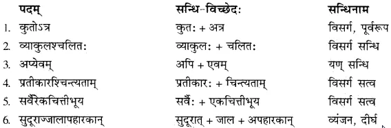 वायसः का अर्थ In Hindi RBSE Solutions Class 10