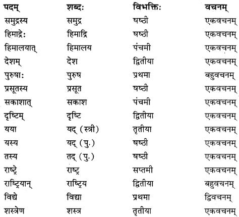 कक्षा 10 संस्कृत पाठ 3