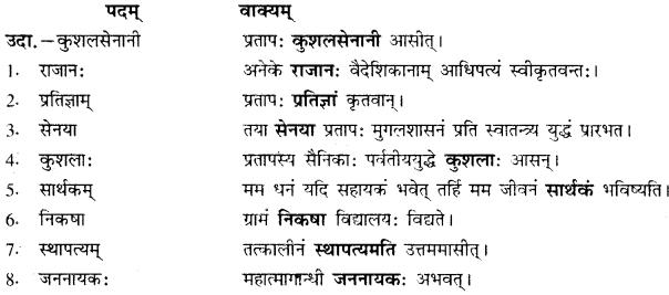 Maharana Pratap Class 10 RBSE