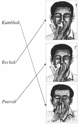 Let's Learn Pranayama Class 5 RBSE
