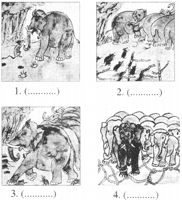 Class 5 English Chapter 3 The Rats And The Elephants RBSE