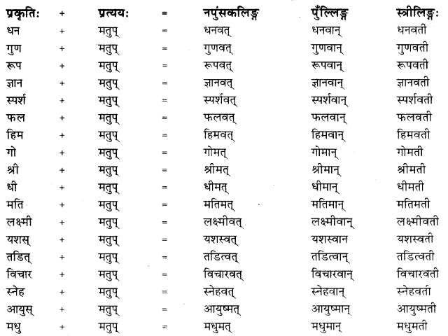 Matup Pratyaya In Sanskrit RBSE Class 10