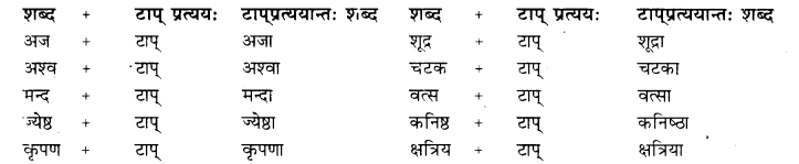 Prakriti Pratyay Class 10 RBSE