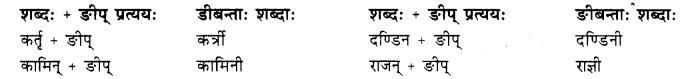 Class 10 Sanskrit Grammar Pratyay RBSE