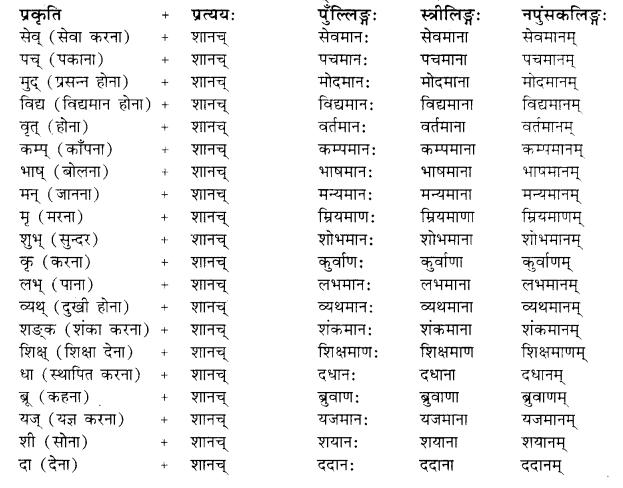 Pratyay Sanskrit Class 10 RBSE