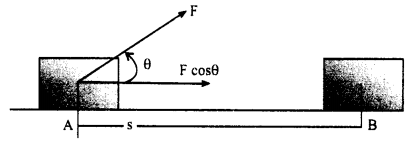 RBSE Solutions For Class 10 Science Chapter 11