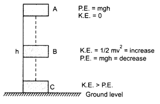 RBSE Solutions 10 Science ch 11