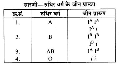 प्रतिरक्षा एवं रक्त समूह कक्षा 10 RBSE