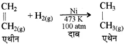 RBSE Class 10 Science Chapter 6 In Hindi Medium