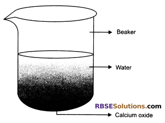 RBSE Class 10 Social Science Chapter 6 Question Answer Chemical Reaction And Catalyst
